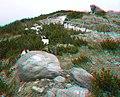 Anaglyph tatry scenery - panoramio.jpg
