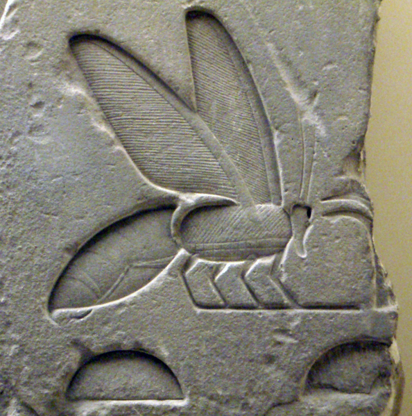 http://upload.wikimedia.org/wikipedia/commons/thumb/3/3c/AncientEgyptianRelief-BeeHieroglyph-ROM.png/594px-AncientEgyptianRelief-BeeHieroglyph-ROM.png