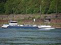Anclajo (ship, 2007) at Koblenz pic1.JPG