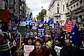 Anti-Brexit, People's Vote march, London, October 19, 2019 15.jpg