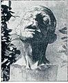 Anton Štefic - Jobova glava.jpg