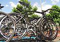 Antwerpen - Tour de France, étape 3, 6 juillet 2015, départ (119).JPG