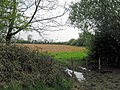 Arable Field South of the canal - geograph.org.uk - 1283119.jpg