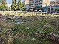 Archaeological site.jpg