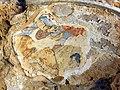 Archeological park Salamis 09.jpg