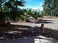 Arizona (5296959737).jpg