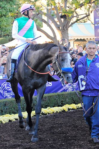 Arrogate - Arrogate with Mike Smith prior to the 2016 Breeders' Cup Classic
