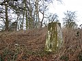 At the edge of Pigg's Grave - geograph.org.uk - 1123002.jpg