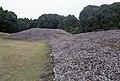 Atoe, Miyazaki, Miyazaki Prefecture 880-2101, Japan - panoramio (1).jpg