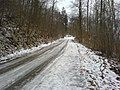 Auf dem Weg zum Aalbäumle - panoramio.jpg