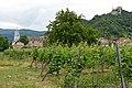 Austria-00520 - Durnstein (20595403902).jpg