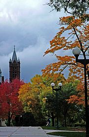 Autumn Arrives at Syracuse