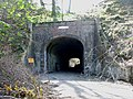 Axminster Tunnel, Thistle Hill - geograph.org.uk - 160226.jpg