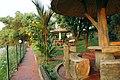 Ayurveda retreat resort in Kerala.jpg