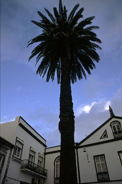 File:Azores28.jpg