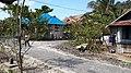 BIWINAPA SIOMPU - panoramio.jpg