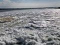 Baie Somme - Le Crotoy (FR80) - 2021-05-29 - 21.jpg