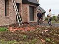 Bailleul - Dégâts causés par la tornade du 20 octobre 2013 (B64).JPG