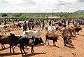Banna market, Ethiopia.jpg