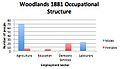 Bar chart showing the occupational structure in Woodlands in 1881.jpg