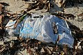 Beach of bantayan 2017 garbage 3 Diaper.jpg