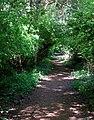 Benson Park trail. SEE INFO IN DESCRIPTION - panoramio.jpg