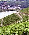 Berg Schlossberg.jpg