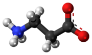 Ball-and-stick model of the β-alanine molecule as a zwitterion