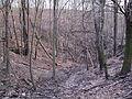 Bezejmenný potok mezi Bohnicemi a Podhořím a jeho okolí (02).jpg