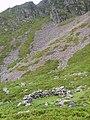 Bield Under Eel Crag - geograph.org.uk - 935728.jpg