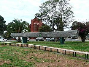 Wingham, New South Wales - The Big Log opposite Wingham Roman Catholic Church