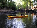 Big Cypress Creek near Jefferson, TX upstream from Hwy 59 - panoramio.jpg