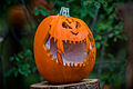 Big Smile Pumpkin (22372752046).jpg