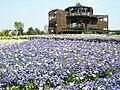 Bihoku-kyuryo Park.jpg