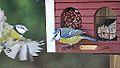 Birdy nam nam (11012533985).jpg