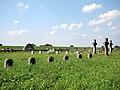 Biskupice Radłowskie - cmentarz wojenny nr 258 (21) - DSC04628 v1.jpg