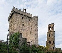 Image result for Blarney Castle