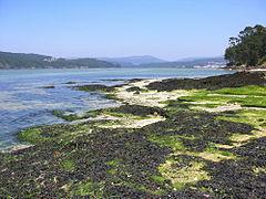 Boa, Praia, Noia, Galicia.070603-1.jpg