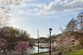 Boathouse Row in Spring - panoramio.jpg