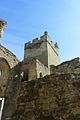 Bodiam castle (7).jpg