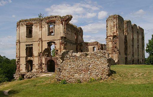 Bodzentyn zamek 20080701 3753