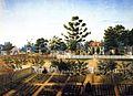 Bois de Fleche Persac 1861.jpg