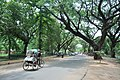 Bolpur-Santiniketan Road and Santiniketan-Sriniketan Road Junction - Hirabai Panthasala Area - Birbhum 2014-06-28 5203.JPG