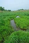 Borah Creek Prairie.jpg