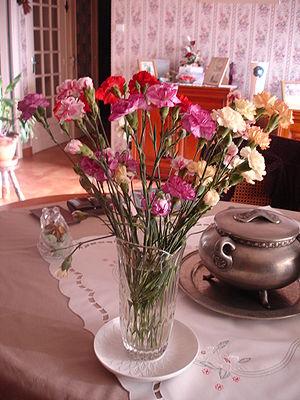 Français : Bouquet d'oeuillets multicolores