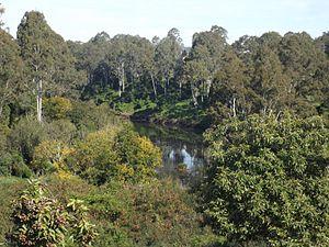 North Ipswich, Queensland - Bremer River, 2015