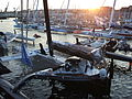 Brest 2012 - Krys ocean race.JPG