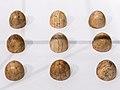 Bretter, die die Welt bedeuten. Spielend durch 2000 Jahre Köln -0676.jpg