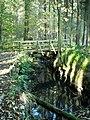 Bridge over Small Burn in Calderglen Country Park - geograph.org.uk - 1022155.jpg