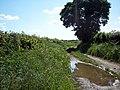 Bridleway to Butlands Farm - geograph.org.uk - 457937.jpg
